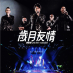 《岁月友情演唱会 LIVE KARAOKE YOUNG&DANGEROUS CONCERT LIVE》