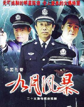中国刑警2英雄本色