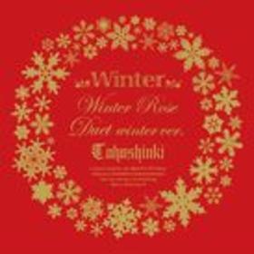 Winter ~ Winter Rose