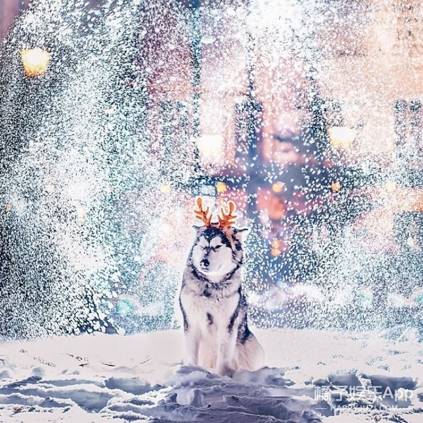 不敢相信!!圣诞前夕的莫斯科美成了童话!