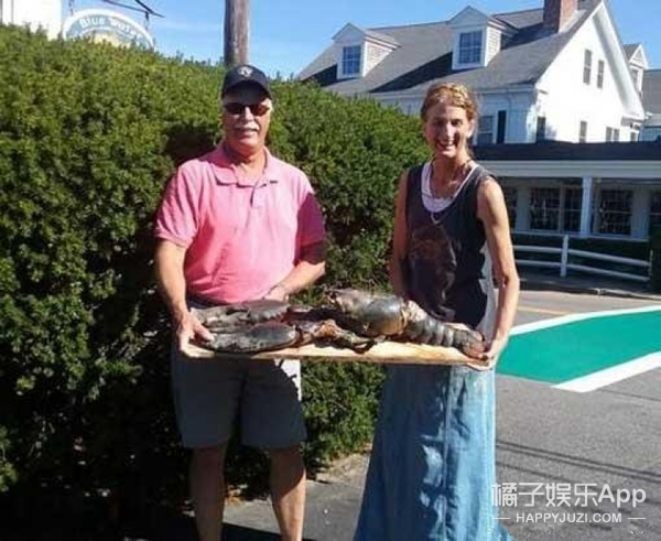 1.2米超大百岁龙虾,被吃素的妹子给救了