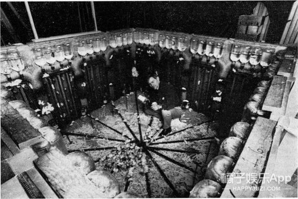 黑暗实验预测未来!他创造了老鼠的天堂,却发生地狱般的景象
