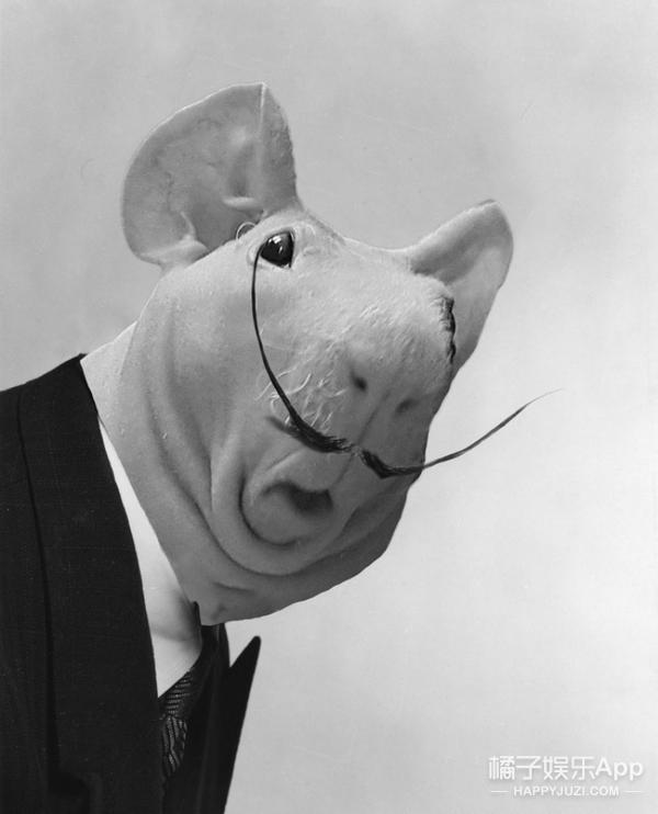超萌天竺鼠惊呆的样子,再次引发网友们的P图大战,卷福川普被玩坏