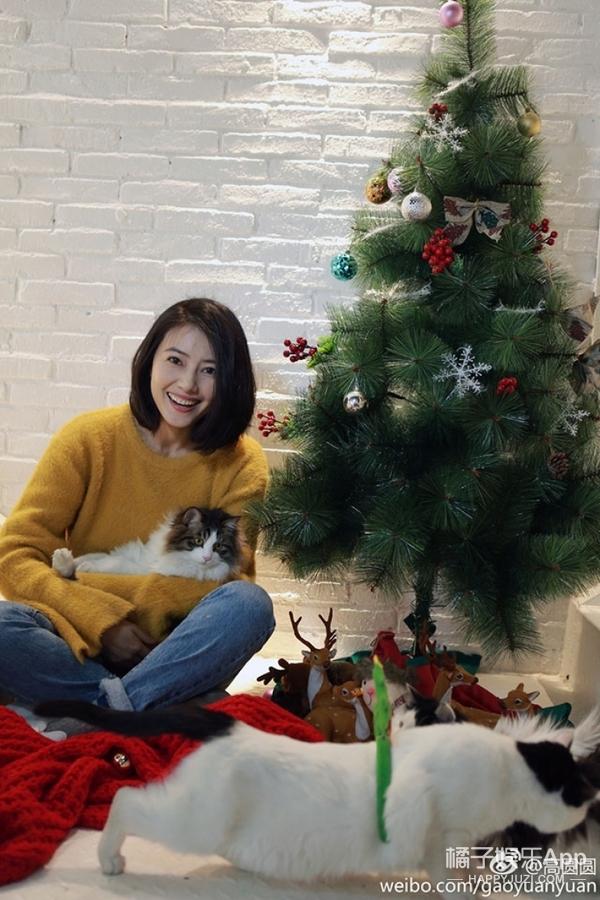 圣诞节你还在收礼物?可时髦的人都在圣诞树前拍照!