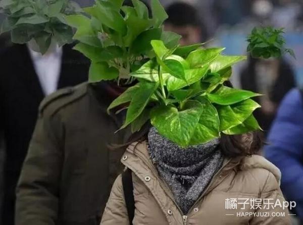 为适应雾霾,多年后人类或许会长出浓密的……鼻毛!!