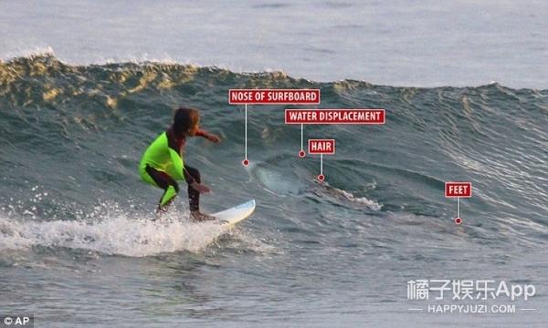 10岁小男孩冲浪遇到鲨鱼?网友们又争论开了