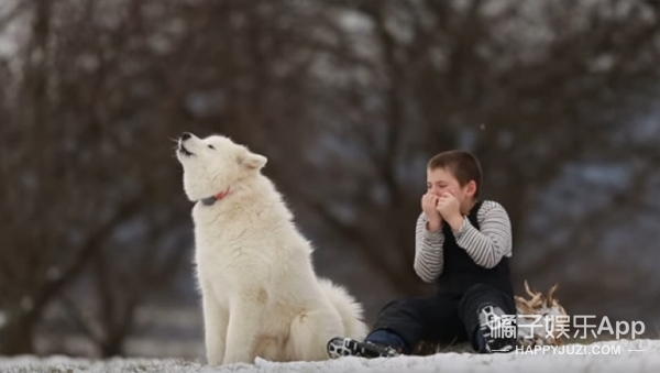 雪地里小男孩吹口琴,狗狗低吟伴奏,纯净画面让世界都安静了