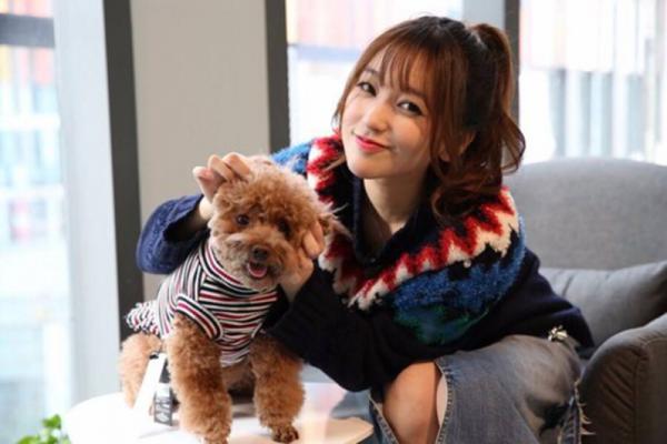 金莎直播为泰迪打造春日造型,甜美女神爱狗大过天
