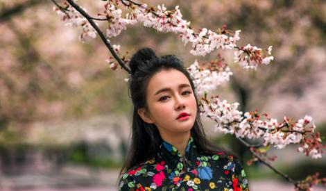 冉莹颖浪漫樱花写真 身穿旗袍大秀中国风