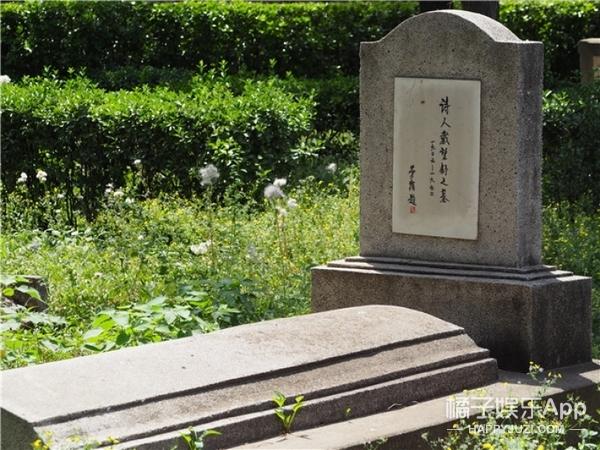 我去了一趟墓地,在那里遇见了很多可爱的人
