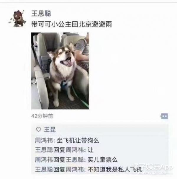 王思聪带爱狗乘私人机回京避雨,王可可才是思聪真正的小公举啊!