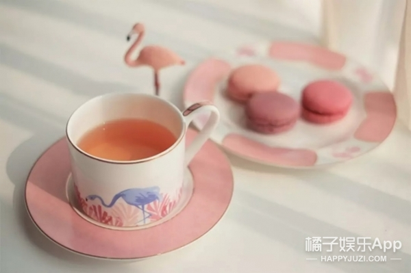 看!火烈鸟站在你的下午茶上!