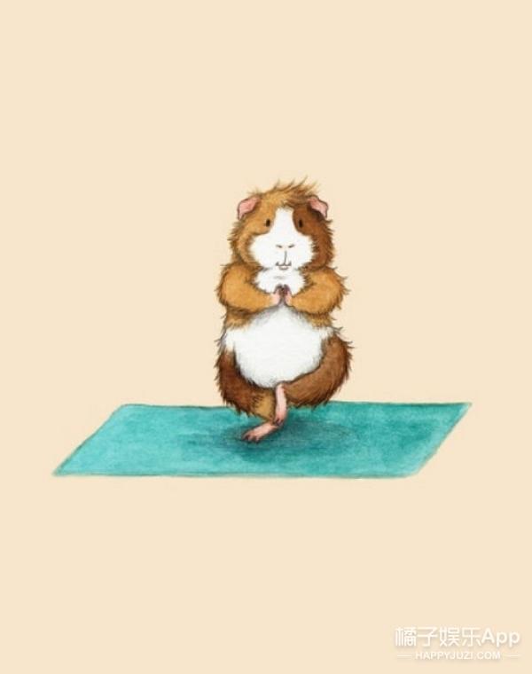 少女,听说你要减肥,不如…我们来练个瑜伽?