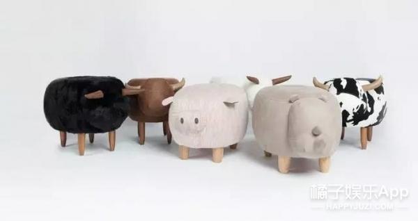 这些小动物养在家里,不用喂养还能提升家居逼格!!