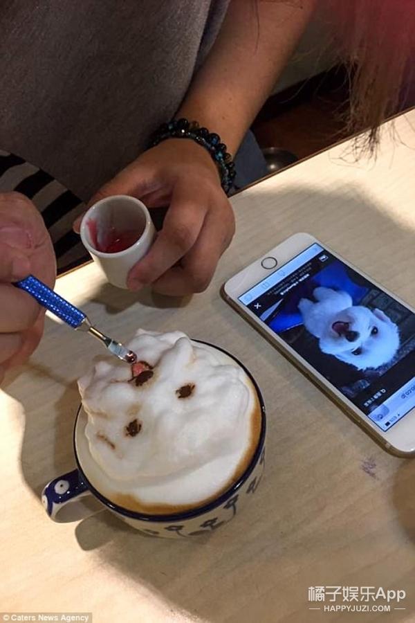 这家咖啡馆的拉花是3D萌宠,铲屎官们会舍不得喝吧