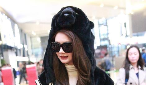 熊出没请注意!戚哥这么萌的黑熊你见过吗?