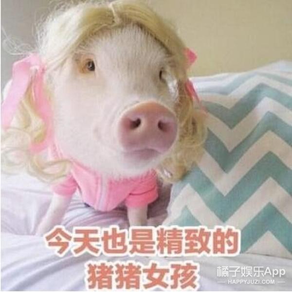如何避免成为一个油腻的猪猪女孩?