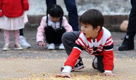 陈小春与Jasper亲子装上阵超有爱 嗯哼蹲地捡玉米粒软萌