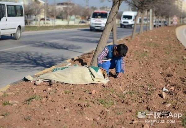 难民男孩陪伴了一只受伤的流浪狗,副市长这样感谢他