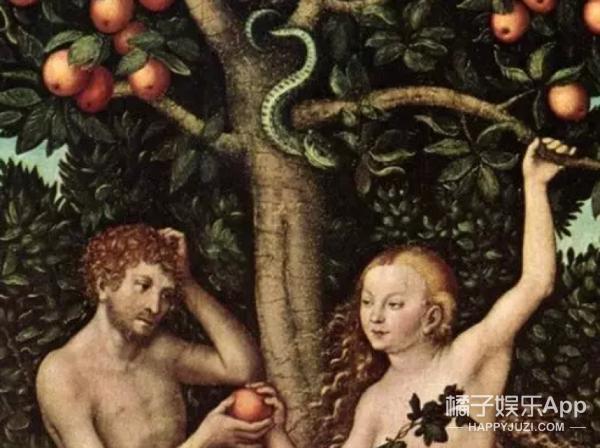 苹果的内在美