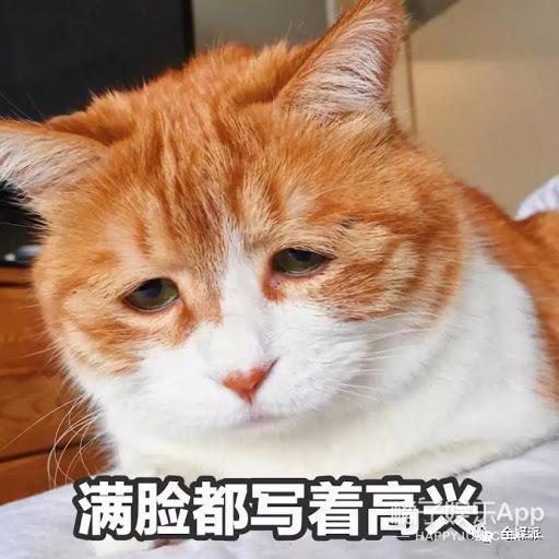 还记得《heartsignal2》金贤佑吗?他现在长这样