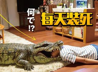 日本又出脑洞大开电影!妻子装死等丈夫回家,每天不重样!