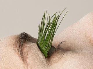 天呐!纯天然植物叶片假睫毛