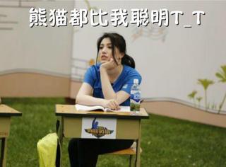 葛天公开回应假怀孕,人家才没有大熊猫那么机智呢
