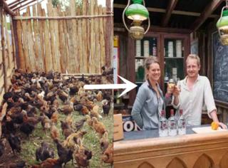 英国农民把废弃鸡舍改成酒吧,惊艳全国!