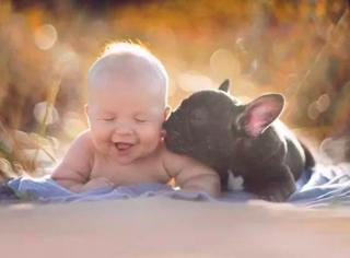 同一天出生的狗狗和宝贝,在同一个家庭相遇了