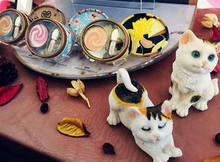 建猫咪咖啡馆还让小猫卖彩妆? Paul&Joe太有心机!
