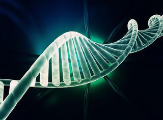 在DNA中存储文件,保质期可达二千年