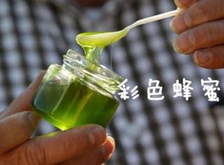 """蜜蜂恋上M&M豆,开始生产""""彩虹蜂蜜""""..."""