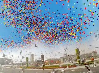 橘子视频 | 气球与和平鸽放飞的那一刻,才是人类真正的追求!