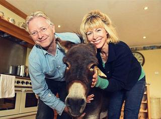 英国夫妇把驴当宠物,驴已深信自己是条狗