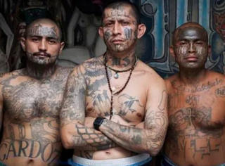 在连狱警都害怕进入的监狱