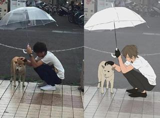 给狗狗打伞,他用一个动作感动了千万人,有人专门为他画了漫画!