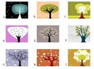 测一测 | 藏在树后的是怎样一个你