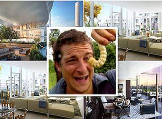 原来,食物链终端的贝爷这么多年用生命吃出了2亿多的豪宅!