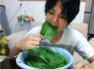 日本人疯了?为了减肥居然吃草!
