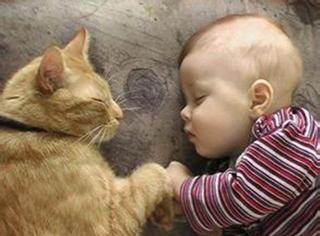为了照顾小Baby,喵星人真的是操碎了心!
