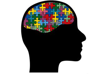 测一测 | 灵动敏捷还是呆若木鸡,你的大脑是哪种?