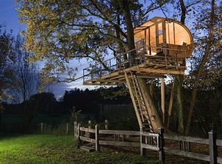 最美的树屋,我愿像鸟一样住到树上去