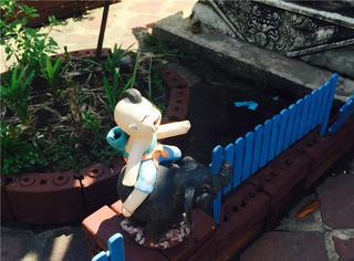 看什么人妖 ,我在泰国寺庙看到了史上最萌的雕塑!
