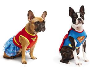 给你家汪星人来件超级英雄的战袍 炒鸡拉风!