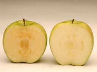 橘子实验室丨把橘子汁、炒菜油、食盐抹在苹果上,真能让它不变色!?