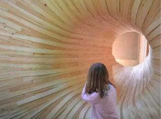 这个人工木洞设计实在是太屌了