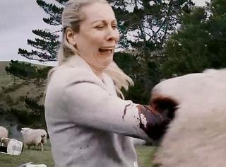 重口味图解 | 羊群疯狂食人,原来温顺的羊也可以这么吓人!