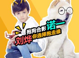 刘烨诺一拍大片,同样的道具同样的狗,效果却如此不同