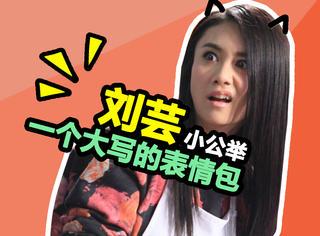 本来要去《一年级》看刘芸跳舞,结果收了一堆逗B表情包!